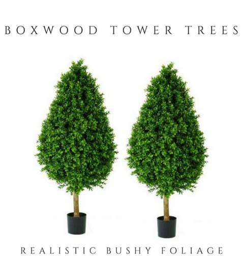 types of topiary trees 25 best ideas about topiary trees on