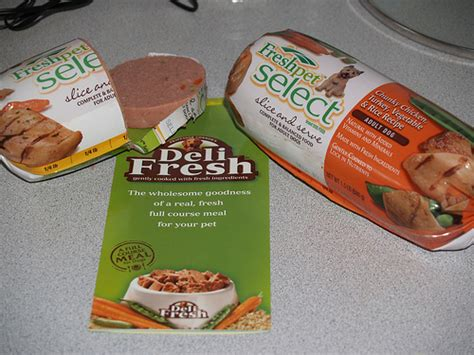 pet fresh food fresh pet food fresh pet food by cynthia blue flickr photo