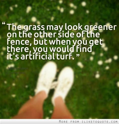 the grass is greener till you get to the other side books the grass may look greener on the other side of the fence