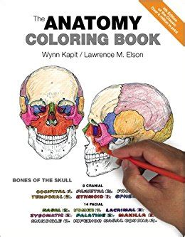 kaplan anatomy coloring book fourth edition the anatomy coloring book 9780321832016 medicine
