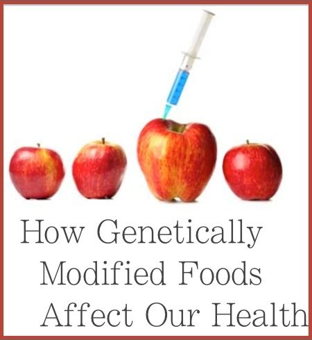 the health risks of genetically modified gmo foods to our health pdf books for free
