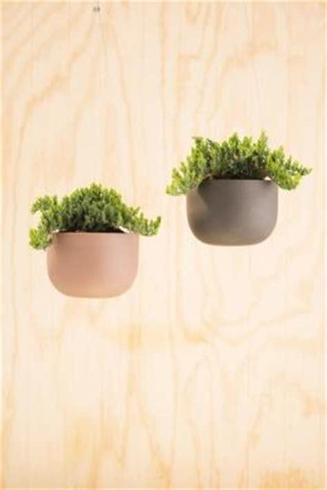 vasi sospesi vasi sospesi per piante da appendere