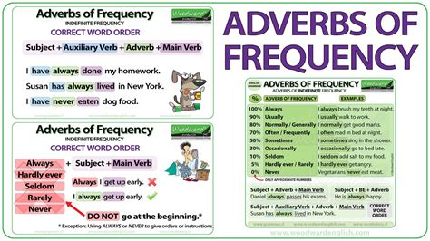 preguntas con frequency adverbs adverbs of frequency in english grammar lesson youtube