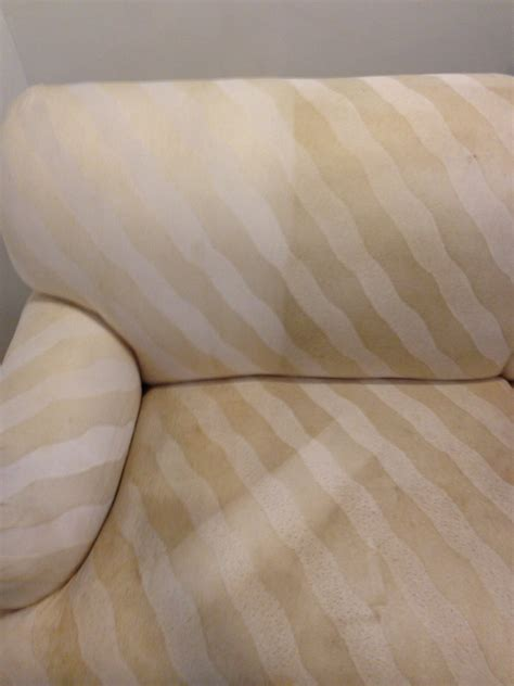 Upholstery Cleaning Ny by Carpet Cleaners Island Ny Before And After Gallery