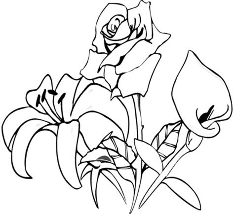 mother nature coloring pages image gallery mother nature coloring pages