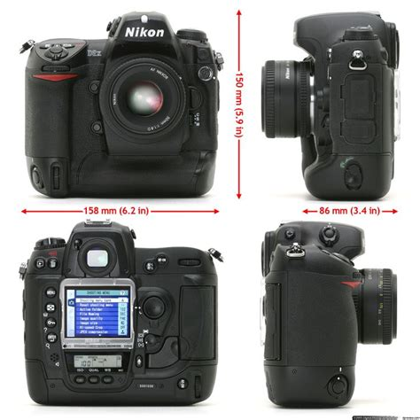 Nikon D2xs Only 25 best ideas about nikon d2x on underwater beautiful sea creatures and sea