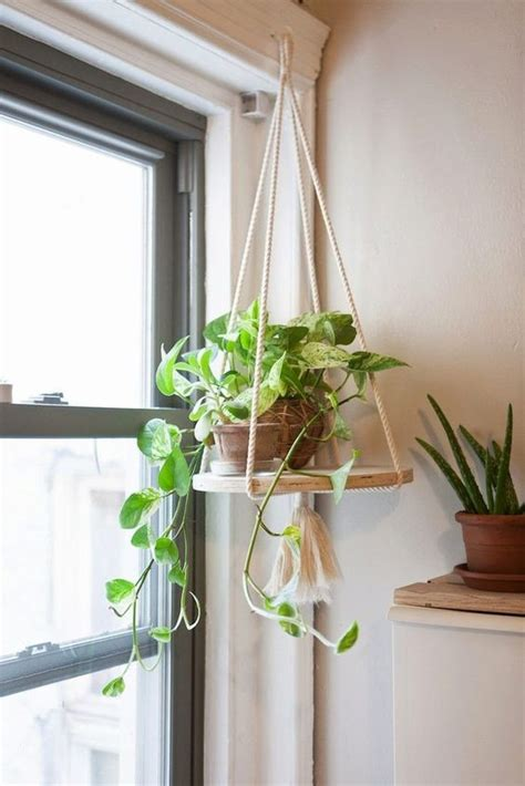 Window Plant Hanger - rope plant hanger san diego the o jays and products