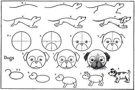 step by step how to draw a pug 8 best images of printable easy drawings how to draw a pug step by step