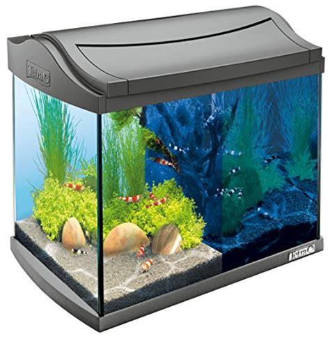 Aquarium 60 Liter 109 by Beleuchtung Tetra Kaufen Bei Futter Und