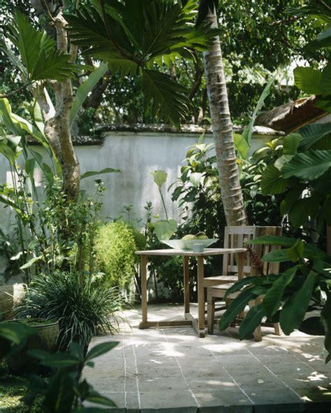 Tropical Patio Design Tropical Patio Photos 31 Of 59 Lonny