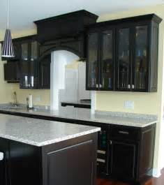 Black Kitchen Cabinets by Kitchen Cabinets Rochester Mn