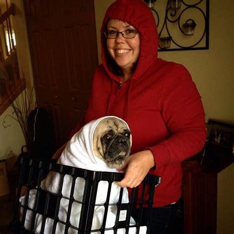 pug et costume 396 best e t costumes images on