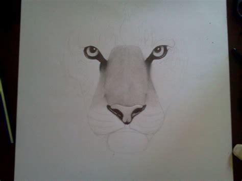 imagenes a la lapiz dibujo tigre a lapiz quot intento realista quot taringa
