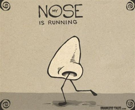 my s nose is running 86 best images about idioms on language and exles