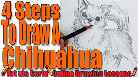 How To Draw A Chiwawa