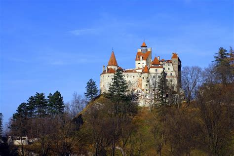 bram castle bran castle castles photo 510805 fanpop