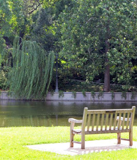 garden park bench calm and peaceful garden design for backyard and frontyard