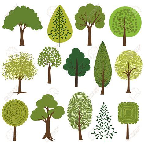 alberi clipart albero clipart clipground