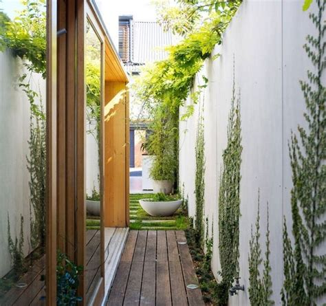 climbing plants for house walls 105 best images about green wall on gardens