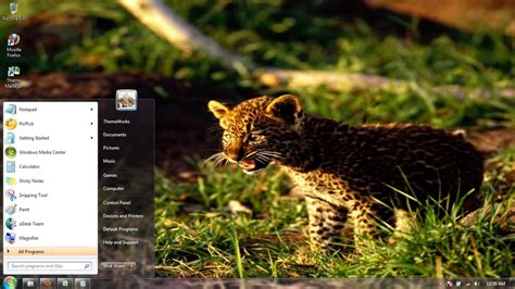 tiger themes for windows 7 free download wild cats 12 windows 7 theme by windowsthemes on deviantart