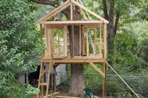 treehouse design software pictures of tree houses and play houses from around the