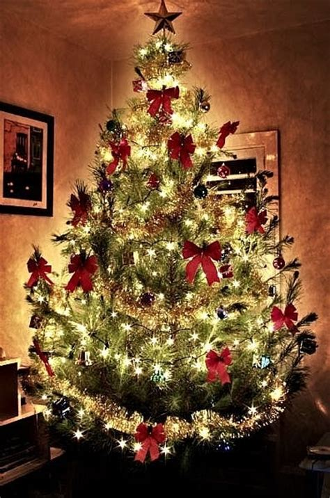 christmas tree with bows christmas photo 9141643 fanpop