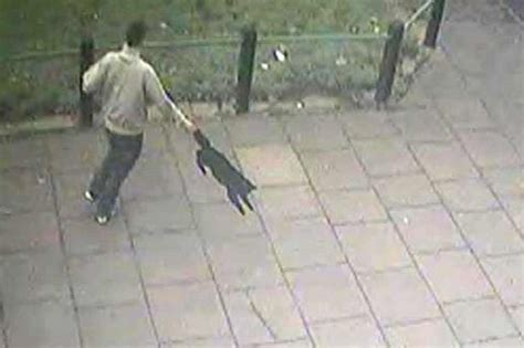 cat with swinging arm hunt for yob seen on cctv swinging cat around by its tail