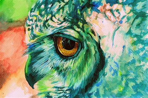 colorful owl wallpaper colorful owl backgrounds www imgkid com the image kid