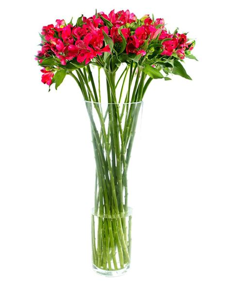 Small Red Vases Alstroemeria Peruvian Lily Flowers By Flourish