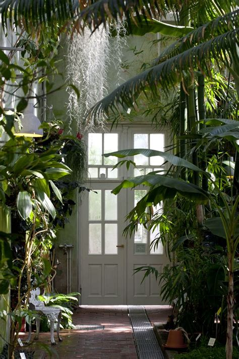 anny indoor jungle