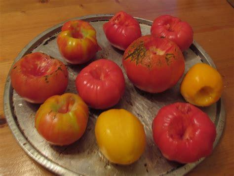 freezing tomatoes the christmas plan