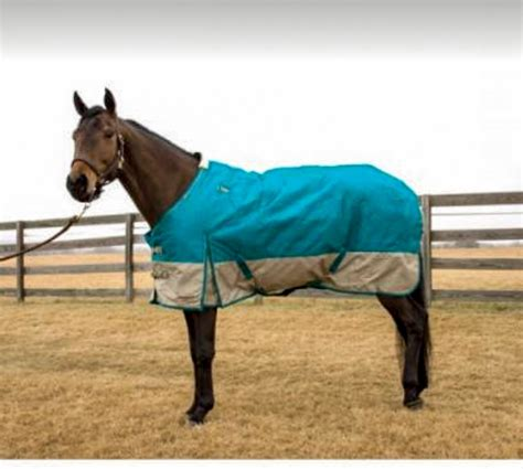 Horses Blankets For Sale by Blanket Box Event November 11 Bar None Country
