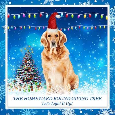 homeward bound golden retriever rescue inc the giving tree homeward bound golden retriever rescue