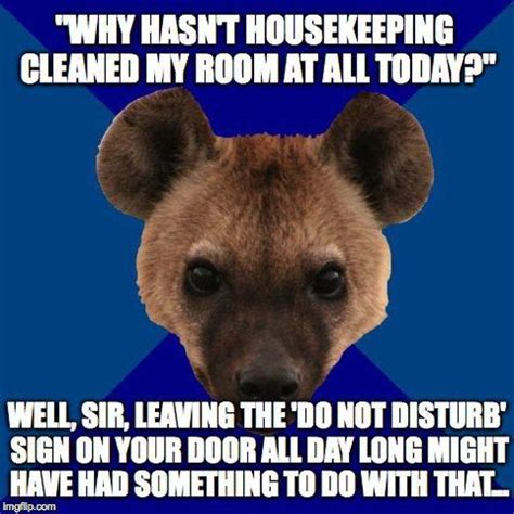 Housekeeping Meme - 75 best housekeeping quotes images on pinterest