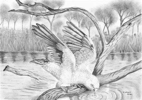 simple pencil painting beautiful drawings of nature simple easy pencil drawings