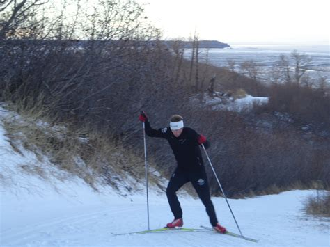 just monkeying around ski coaches hang from trees wearing uaa nordic ski team another day another interval
