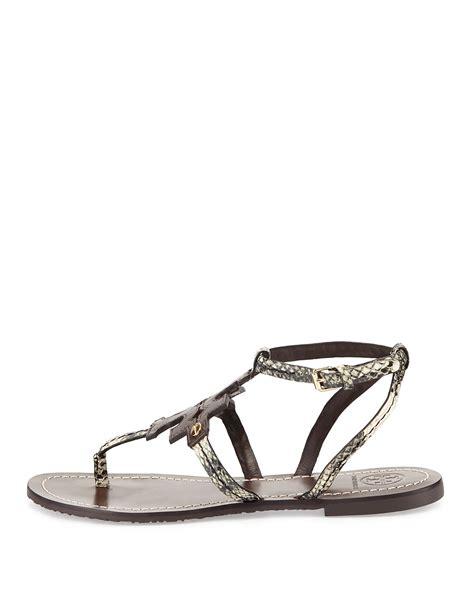 burch phoebe sandal burch phoebe snake embossed flat sandal in brown