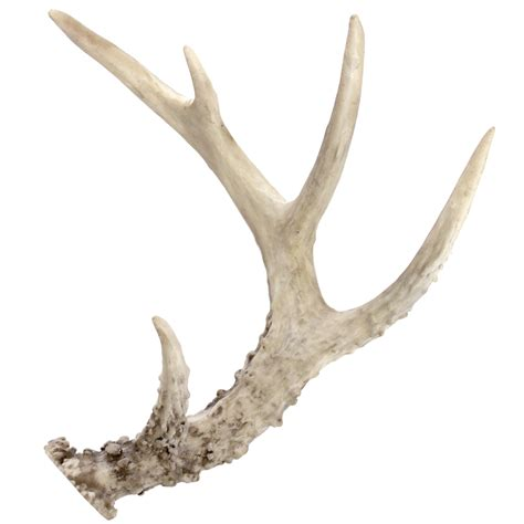 Deer Horn Chandelier Whitetail Deer Horn Crafts