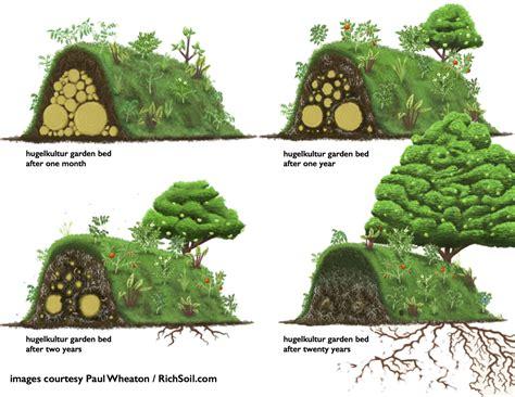 hugelkultur bed all about hugelkultur the ultimate raised garden bed