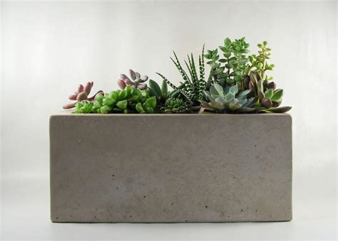 concrete planters rectangular concrete planter by roughfusion on etsy