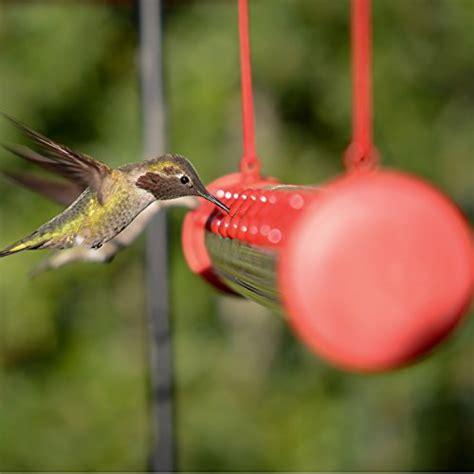heat l for hummingbirds perky pet humbar200dtc hummerbar hummingbird feeder 2