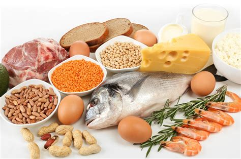 protein nutrients benefits of protein every nutrient