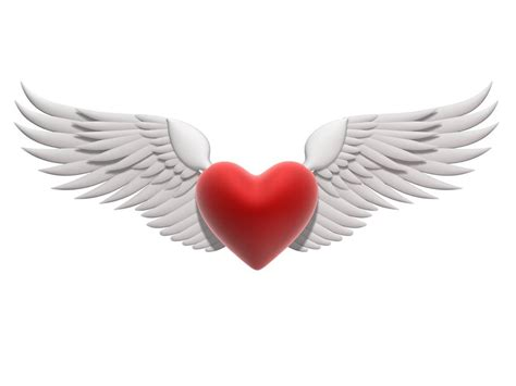 imagenes de alas blancas imagenes de corazones con brillos y animados de amor para
