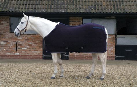 rugs for horses 7 cooler rugs your will thank you for buying hound
