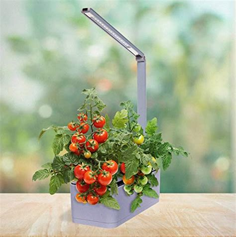 hydroponics kits mindful design hydroponic herb