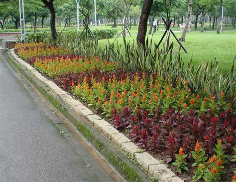 design annual flower bed gardening landscaping annual flower bed designs