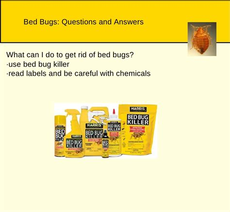 what chemicals do exterminators use for bed bugs what chemicals do exterminators use for bed bugs 28