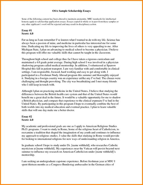 Scholarship Essays Sles For College Students 10 Application Essay Template Ledger Paper