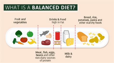is balance a food what is a balanced diet proactiv