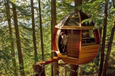 treehouse living treehouse living the ultimate in off grid privacy